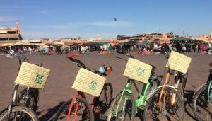 bienale-fietsen-800x455